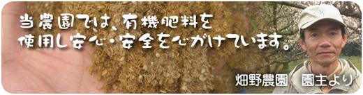 当農園では、有機肥料を使用し安心・安全を心がけています。 畑野農園 園主より